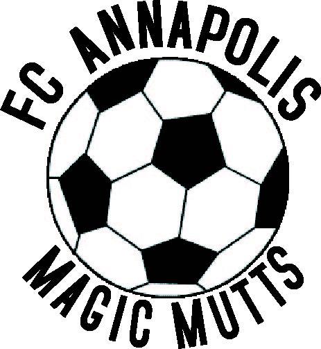 Anne Arundel Adult Soccer 12